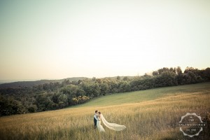 Ashleigh and Tyler, Tuscan fields