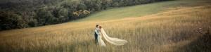 tuscan cornfield wedding