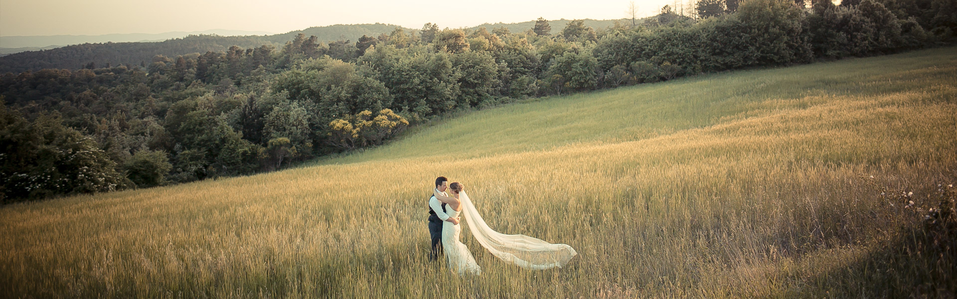 corn field wedding Tuscany