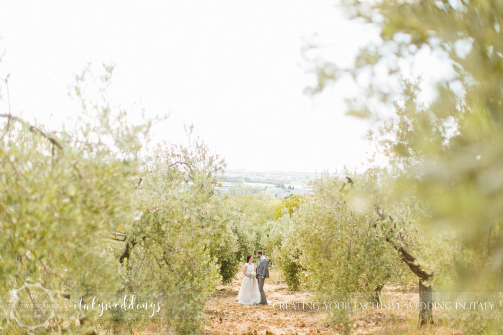 Tuscan coastal wedding, olive grove
